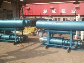 浮筒式潜水泵-重庆某园林公司湖泊取水园林灌溉