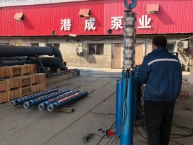 200型不锈钢深井泵发往云南