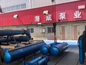 150QJF浮筒潜水泵发往东北