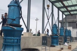 天津幸福河泵站280千瓦潜水轴流泵安装现场