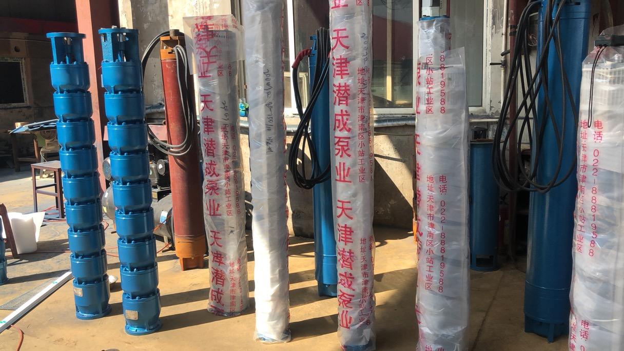 200QJR,250QJR热水深井泵专车送货山东第1张-潜水电机-潜水电泵-高压潜水电机-天津潜成泵业