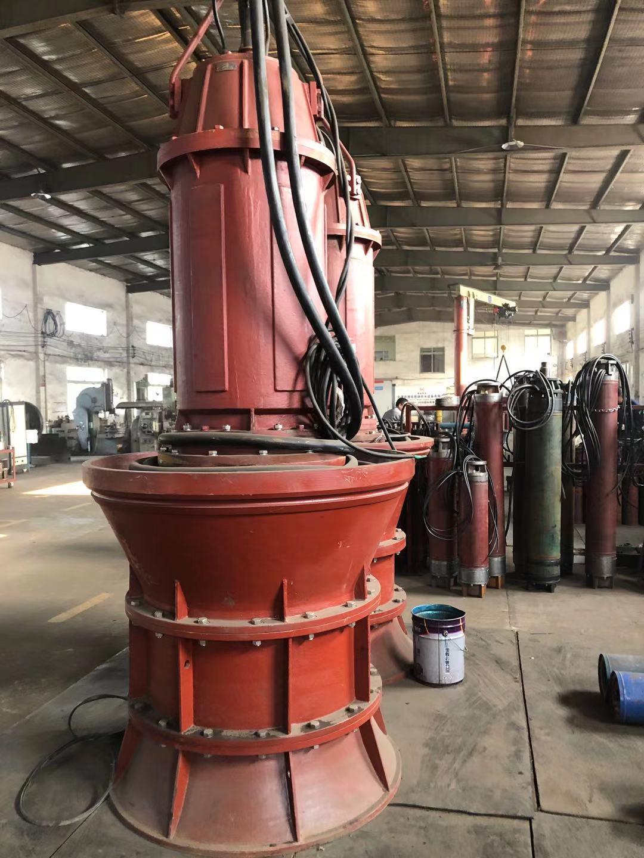 900QZB-280kw潜水轴流泵第1张-潜水电机-潜水电泵-高压潜水电机-天津潜成泵业
